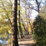 Sonniger Herbsttag am Speegraben