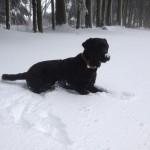 ayka-im-schnee-winterberg2013