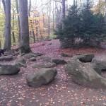 Die Frauensteine - schon 35 Mio. Jahre alt