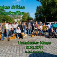 Aykas dritte gemeinsame Gassirunde: Urdenbacher Kämpe