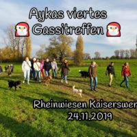 Aykas viertes Gassitreffen – Rheinwiese Kaiserswerth
